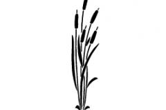 Sandblastur-Floral_ (12)