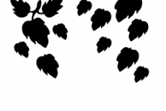 Sandblastur-Floral_ (15)