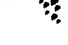 Sandblastur_Mynstur_ (31)