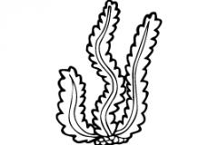 Sandblastur-vatn-sjo-vedur_ (14)
